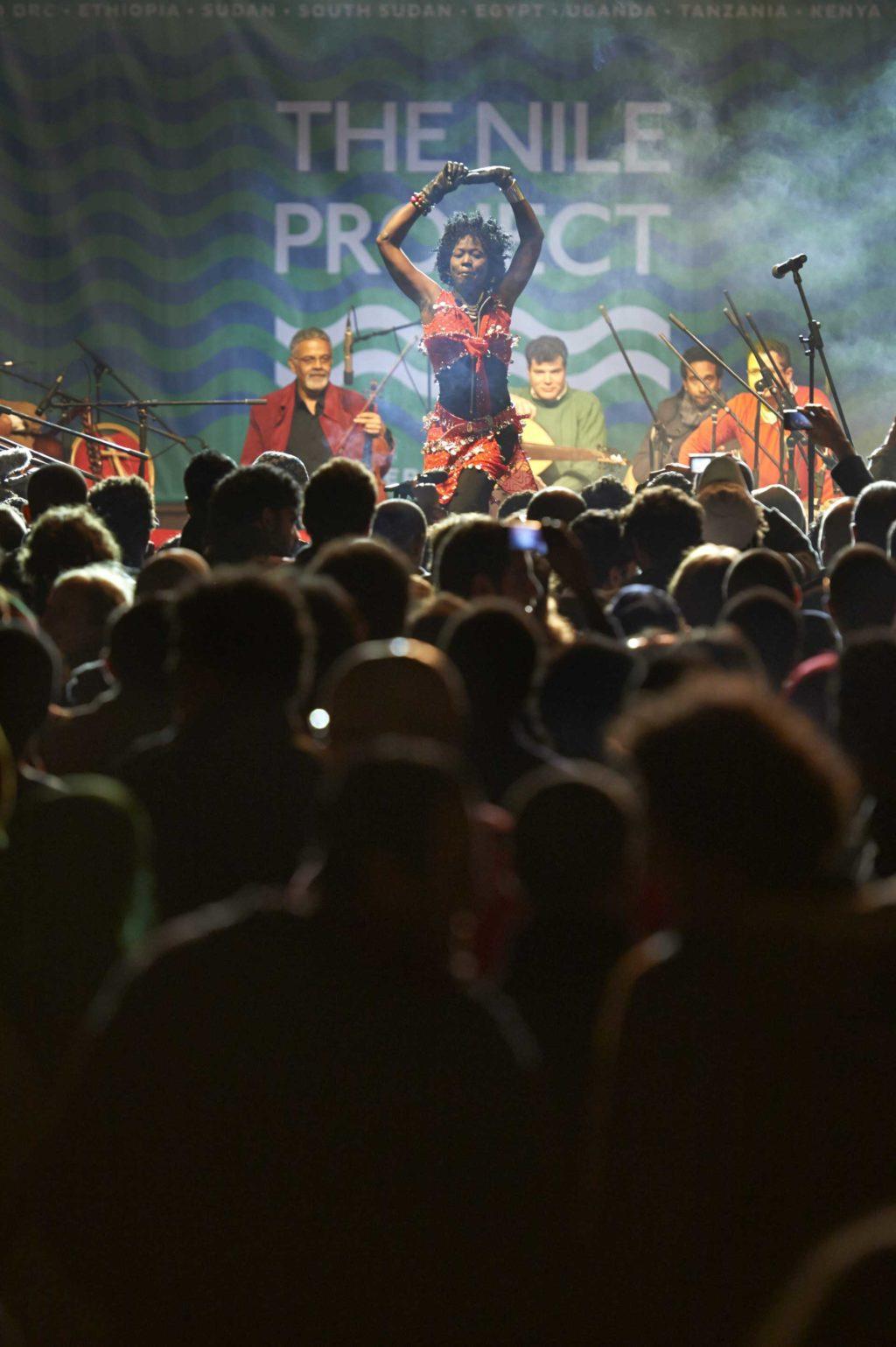 Nile-Project_2013-Cairo-Concert_180_Matjaz-Kacicnik